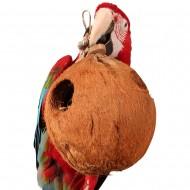 Gran coco relleno