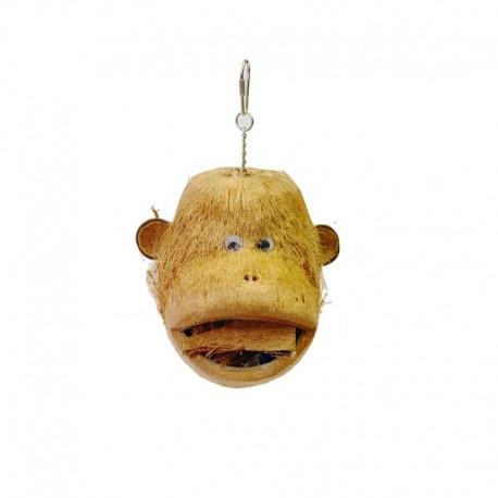 Coco monkey