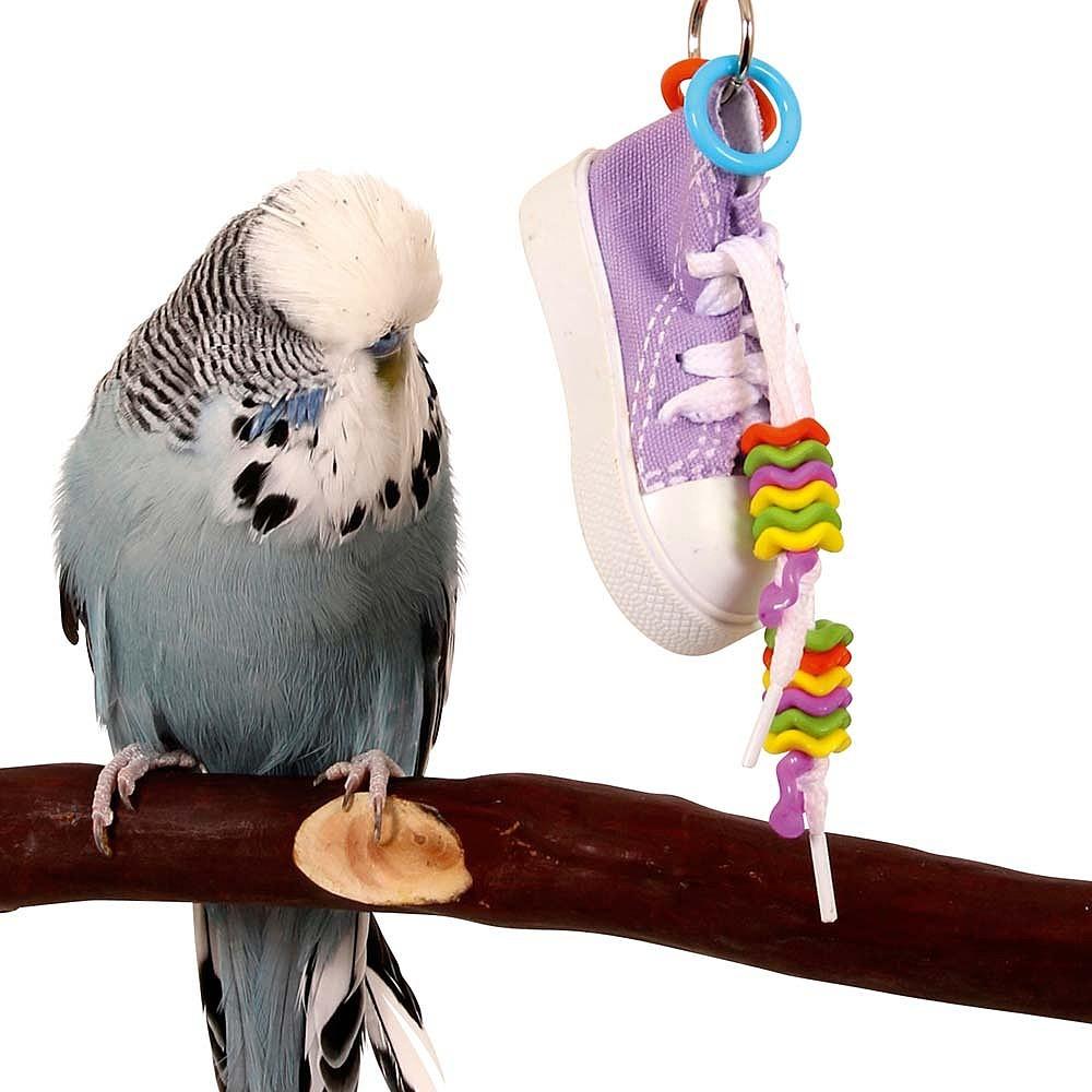 Colgante zapatilla Cool Parrots