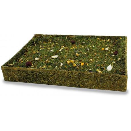 Tapete de hierba con semillas para forrajear