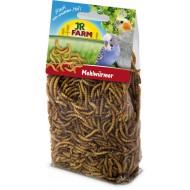Gusanos de la harina deshidratados JR Farm